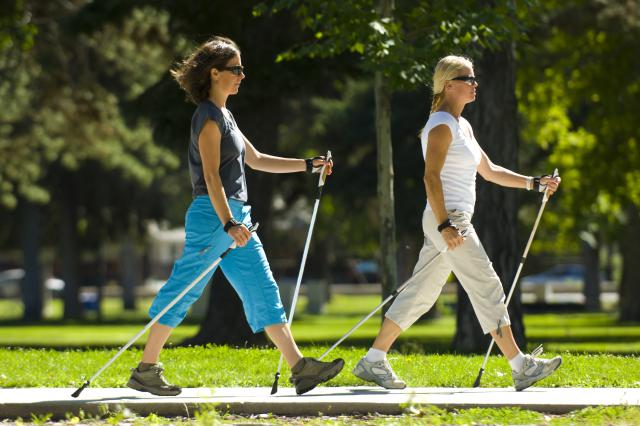 Trekking Poles As An Alternative To Walking Canes | Best Trekking Poles  Reviews